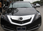 Acura ZDX  Advanced 2009